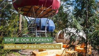 Art Camp op camping de Hertshoorn
