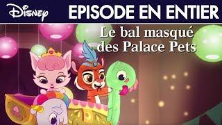 Le Petit Royaume des Palace Pets - Le bal masqué