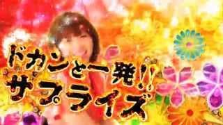 〈ぱちんこ必殺仕事人 お祭りわっしょい〉プロモーションムービー ▽機種...