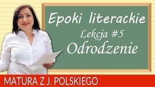 62. Matura z polskiego 2018: powtórzenie o epokach literackich - odrodzenie