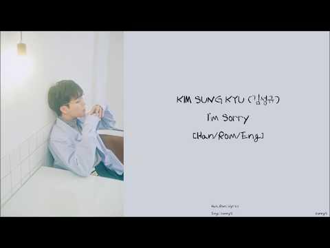 KIM SUNG KYU 김성규 : Sorry [Han/Rom/Eng] Lyrics