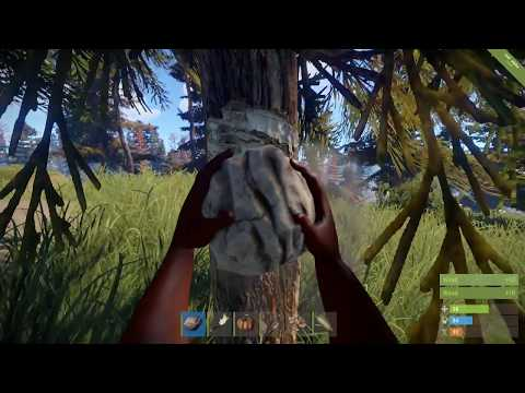 Rust: Stealing Bases
