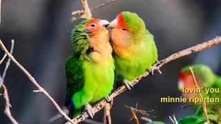 Minnie Riperton - Lovin' You [HD]