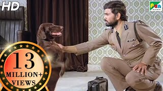 Moti Provides Murder Evidence To Police Commissioner | Teri Meherbaniyan | Action Scene 5 of 6 | HD thumbnail