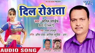 दिल रोवता - Dil Rowata - Ankhiya Lagela Maikhana - Anil Pandey - Bhojpuri Hit Song 2018