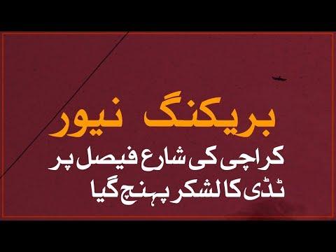 Dangerous Locusts Attack In Karachi   SAMAA TV   11 November 2019