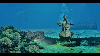 Relaxing Classical music | Music For Studying | Yoga | Stress Relief 2020