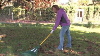 Plant Care & Gardening : How to Rake Leaves