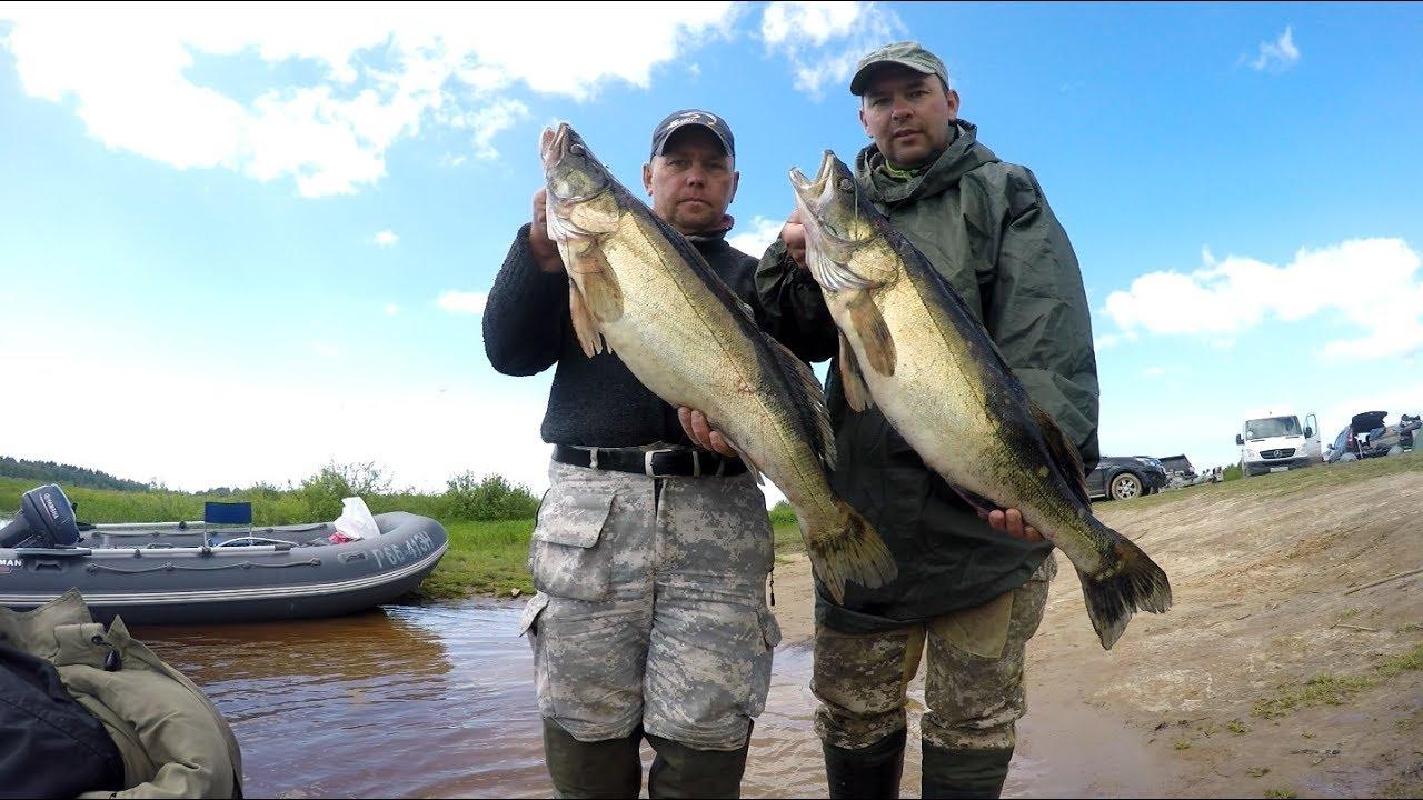 воблеры на судака на рыбинском водохранилище