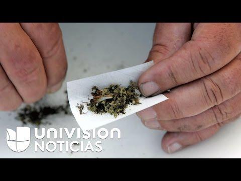 Incremento de personas que llega a Colorado para consumir y cultivar marihuana incomoda a población