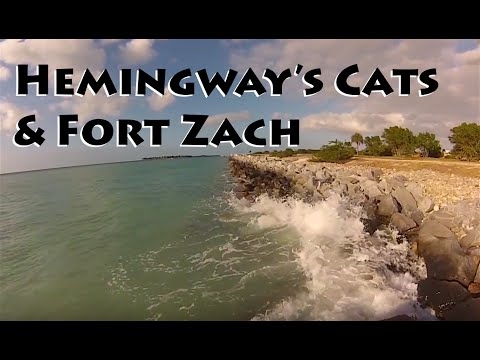 Hemingway's House of Cats & Fort Zachary SP