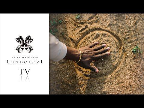 Celebrating 10 Years of the Tracker Academy - Londolozi TV