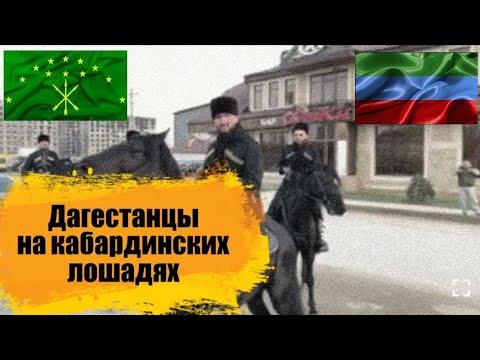 Дагестанцы на черкесских лошадях(кабардинская порода). Единый Кавказ