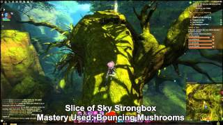 GW2 Auric Basin Mastery Strongboxes Guide