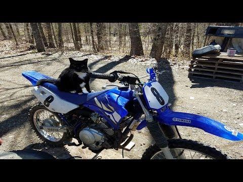 How to Clean a Round Slide Dirt Bike Carburetor