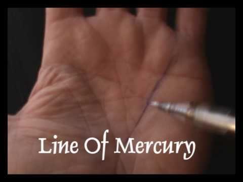 PALMISTRY - THE MERCURY LINE  - JIM WINTER