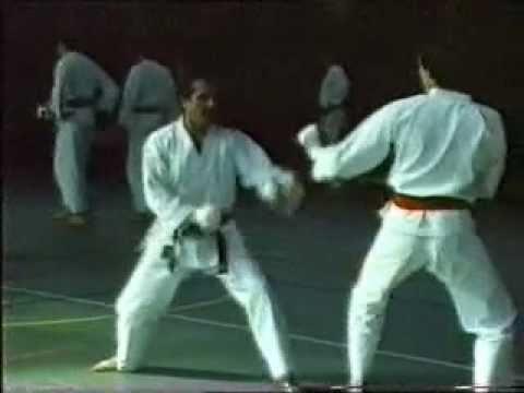 Fabio Rossini - Kumite 2