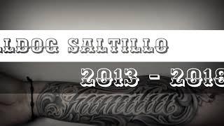 Video BullDog SALTILLO - 2013 - 2018 download MP3, 3GP, MP4, WEBM, AVI, FLV September 2018