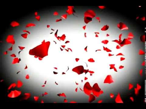 Valentines day motion Graphics art - YouTube