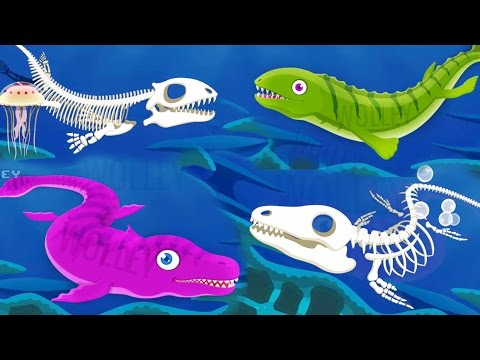 Children Learn About Dinosaurs - Ocean Dinosaurs - Fun Educational Dinosaur Park 3 Games For Kids