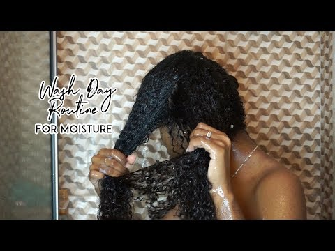 Wash Day Routine for Natural Curly Hair | From Dry to Moisturized Hair