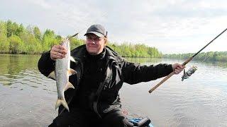 БАЗА ОТДЫХА ВИЗ ВОЛГОГРАД-Волго-Ахтубинская пойма рыбалка лес зимние дома.