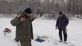 Рыбалка на Камчатке. Рождественская корюшка ))
