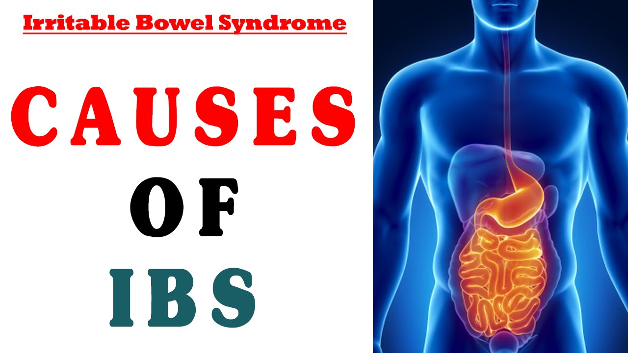 Causes of Irritable Bowel Syndrome - YouTube