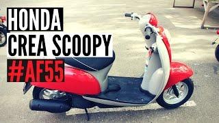 Скутер Honda Crea Scoopy 50 AF55 Digital dashboard - Walkaround, Kupiscooter.ru
