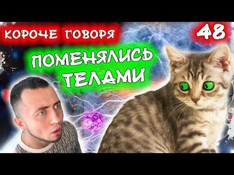 КОРОЧЕ ГОВОРЯ, ПОМЕНЯЛИСЬ ТЕЛАМИ / КОРОЧЕ ГОВОРЯ КОТЕНКА СБИЛА МАШИНА / Бездомный котенок Лайки
