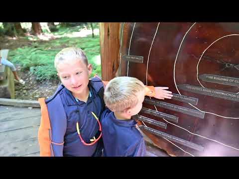 MUIR WOODS!!!  Noah And Eli Visit The Famous Redwoods!