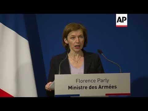 French defence min: airstrikes in Syria were a success