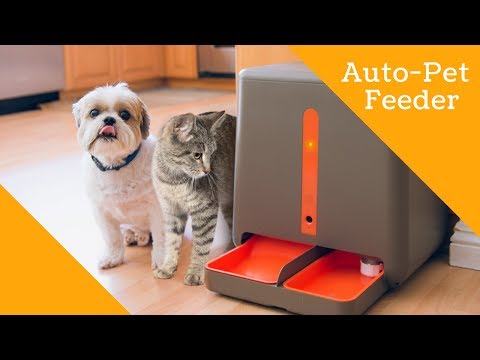 Automatic Pet Feeder with Wifi: EasyFeed