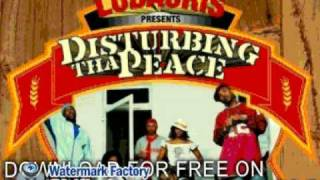 disturbing tha peace - when i touch down - Golden Grain