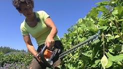 Puutarhan akkukäyttöiset koneet helpottavat töitä