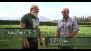 Dr. Andrew Weil M.D. visits Kauai Organic Farms in search of fresh Turmeric