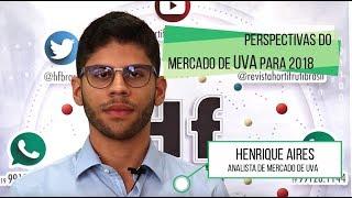 HF Brasil Entrevista - Henrique Aires (Uva)