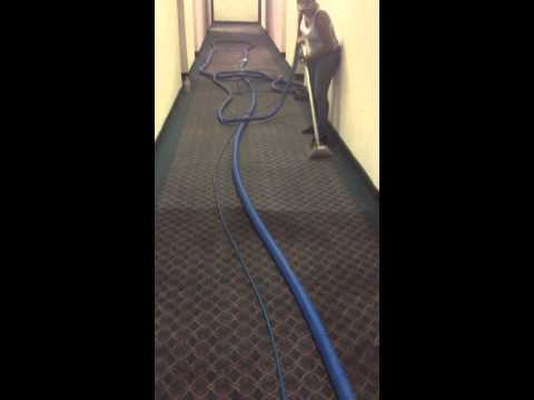 Carpet Cleaning Job In Action.........