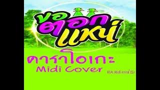 ขอตอกแหน่ เพชร สหรัตน์ คาราโอเกะ Midi Cover