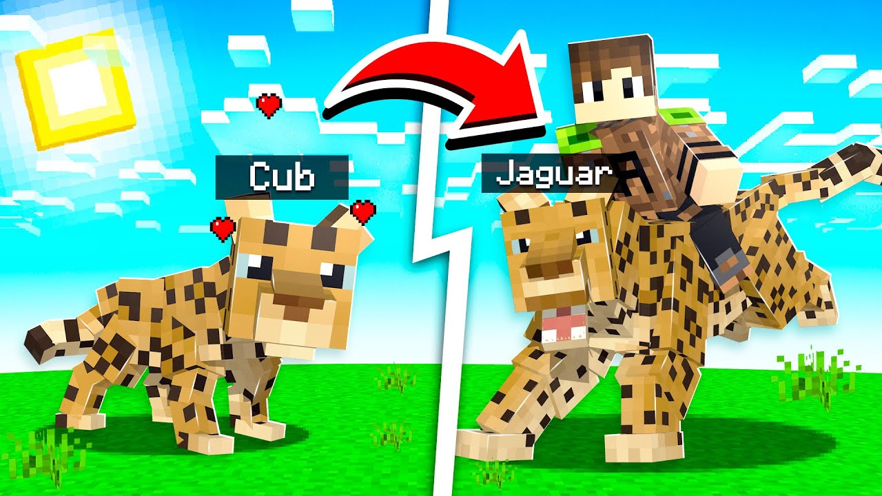 Download HOW TO GET A PET JAGUAR IN MINECRAFT! (sneaky) | Wildlife: Zoo Pt. 5