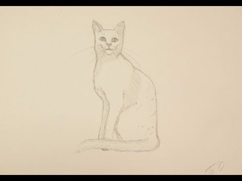 Как рисовать поэтапно кошку