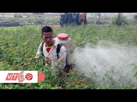 Thuốc bảo vệ thực vật