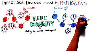 Herd Immunity: Understanding COVID-19