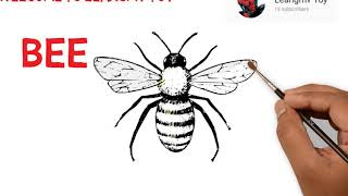 drawing a bee, how to draw bee, coloring bee, coloring page for kids