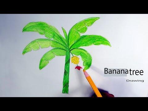 Banana Tree Drawing Easy For Kids