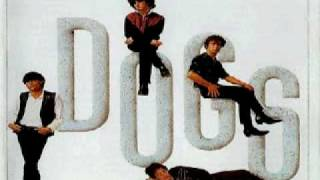 DOGS - bird doggin