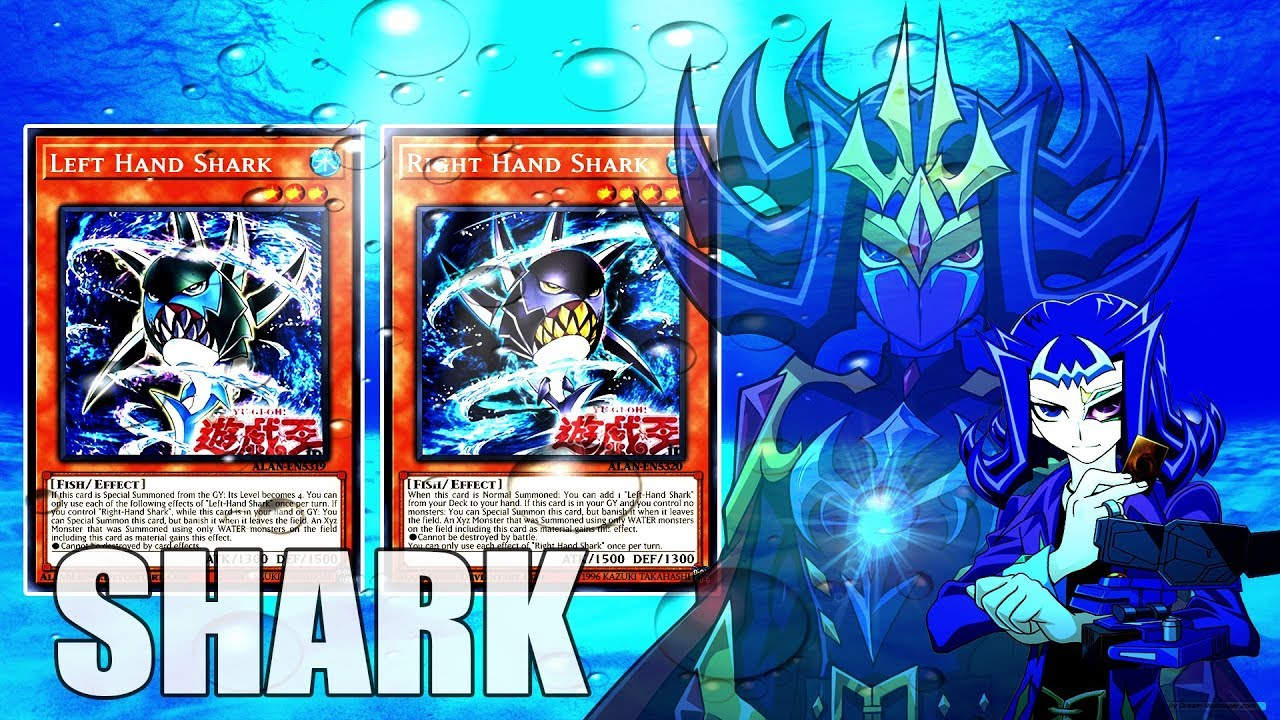 YGOPRO】Shark Deck New Supports Left Hand Shark Right Hand Shark (Yugioh !)  - YouTube