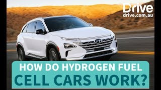 How Do Hydrogen Fuel Cell Cars Work?   Drive.com.au