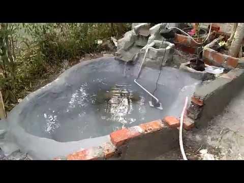 kolam ikan depan rumah - youtube