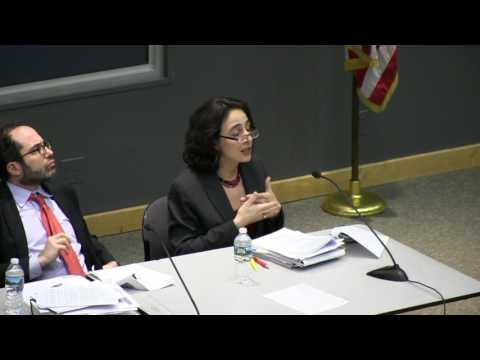 Seton Hall Law Professors Explain the President's Executive Orders on Immigration